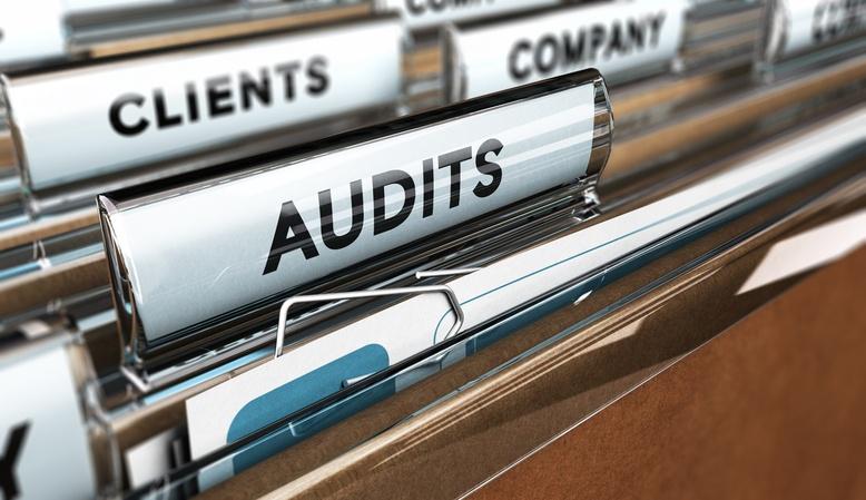 À chaque service sa typologie d'audit