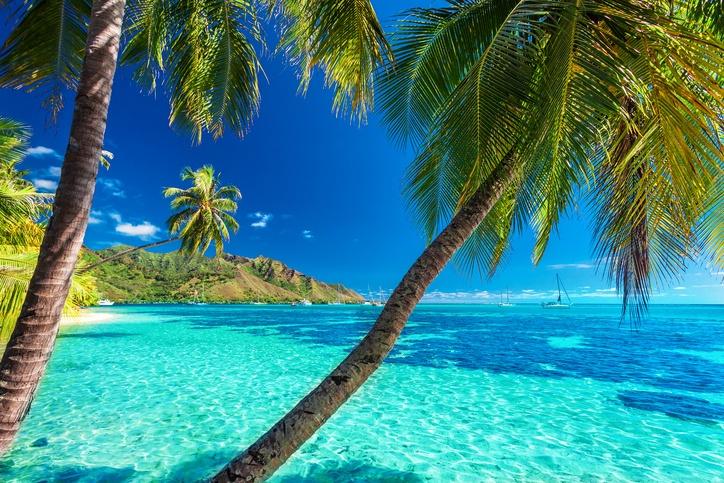 Voyage d'affaires en Polynésie